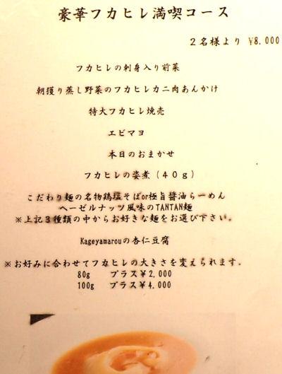 IMG_6226b.JPG